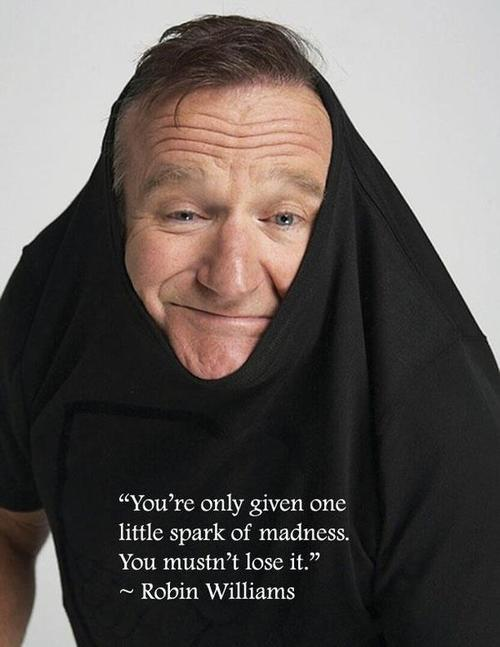 Robin Williams Spark of Madness